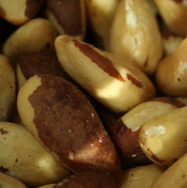 Whole Brazil Nuts