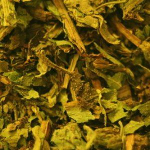 Comfrey Tea (Knitbone)