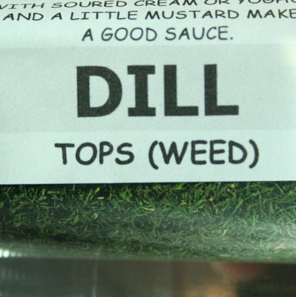 Dried Dill Weed Tops