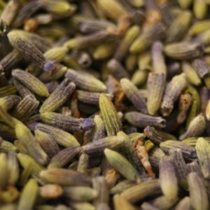 Lavender Flower Buds (food grade)