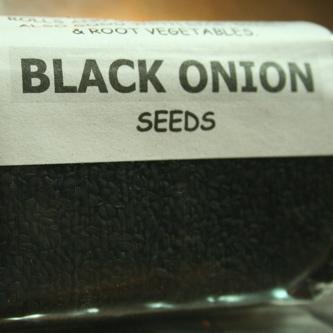 Onion Seed (Nigella Sativa)