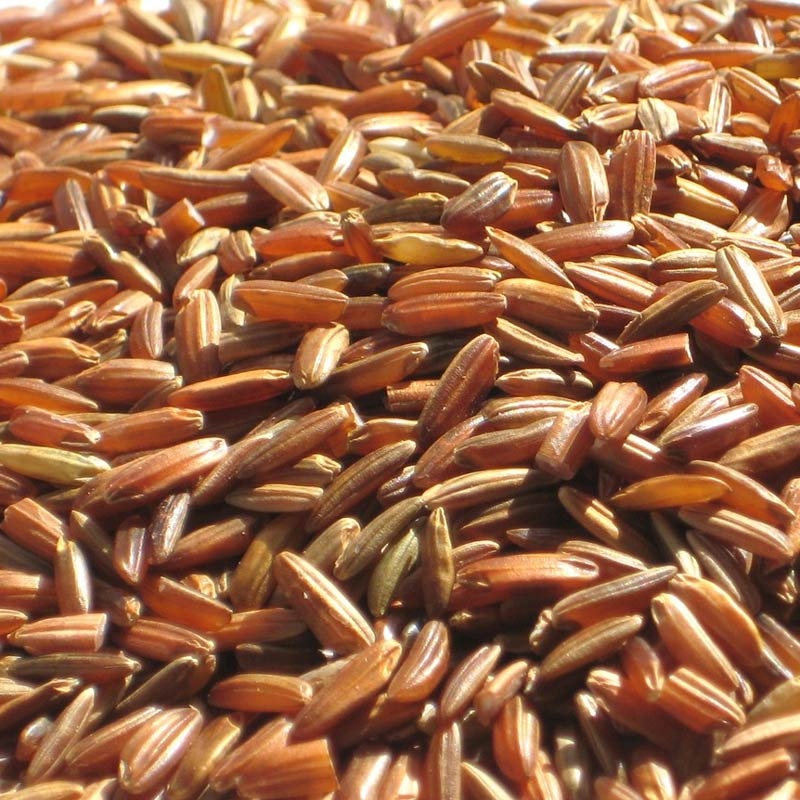 Red Camargue Rice