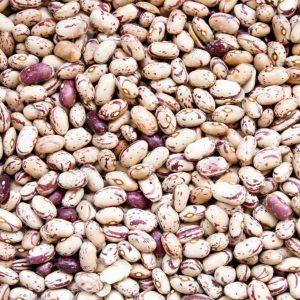 Pinto Beans - Organic